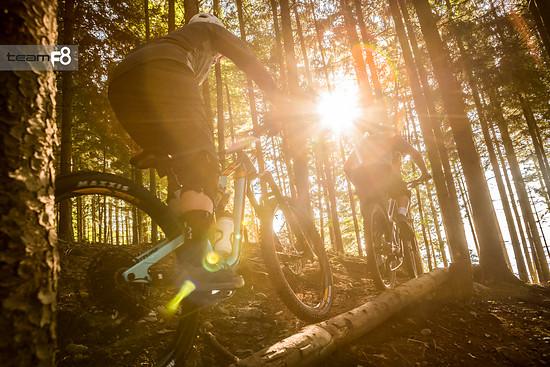 goldener herbst im bikepark samerberg