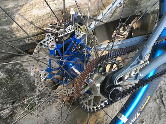 Portus Cycles Krowd Karl Rear End