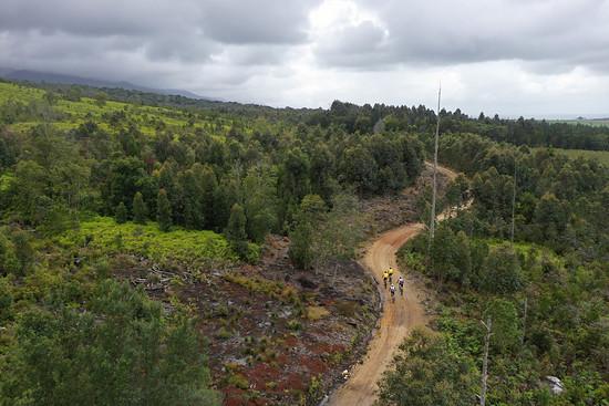 Noch am Fuß des Outeniqua-Gebirges führte ein Großteil der heutigen Strecke entlang