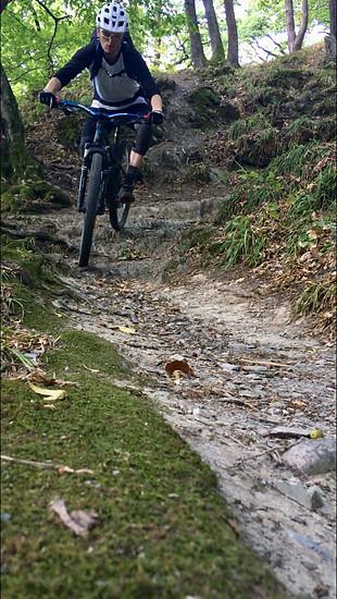 BN-Trail, Nassau, Canyon Spectral AL 7.9