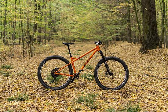 Orange P7 (3)