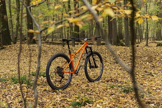 Orange P7 (6)