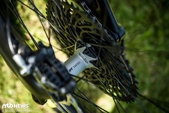 Die DT Swiss M1700-Laufräder bringen zwar ein paar Gramm mehr auf die Waage, können dafür aber auch einiges wegstecken.