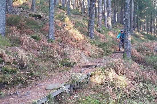 Blackforest Trail 2