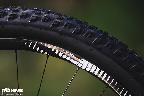 Carbon auch an den Felgen: In punkto Laufrädern kommen Reynolds TR309 zum Einsatz