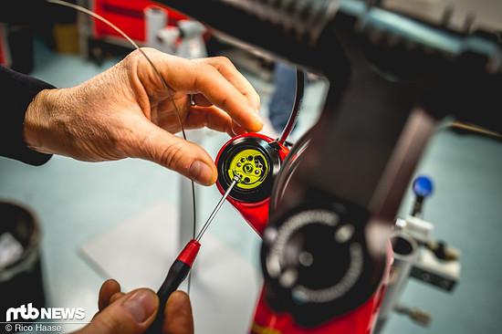 Cannondale Retro-Bikes Sonderedition DSC 4965
