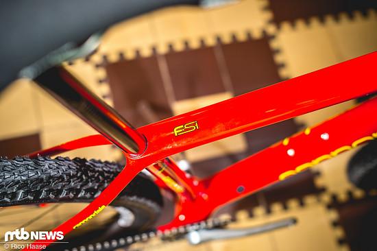 Cannondale Retro-Bikes Sonderedition DSC 5080