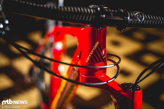 Cannondale Retro-Bikes Sonderedition DSC 5108