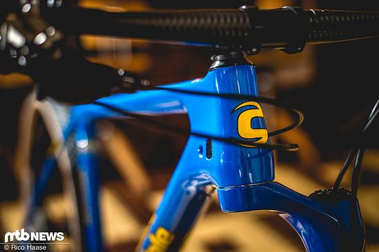 Cannondale Retro-Bikes Sonderedition DSC 5131
