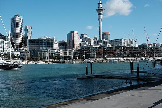 Der Hafen in Auckland