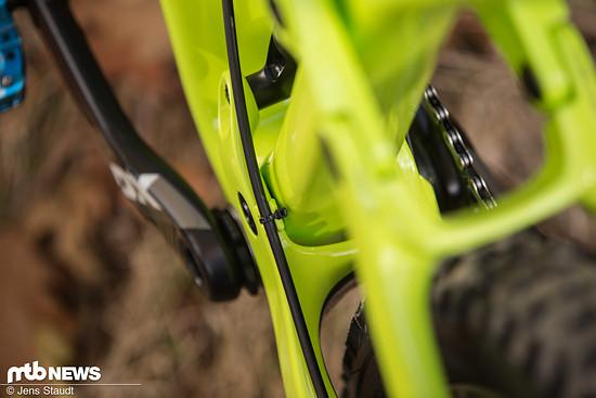 Foto Jens Staudt Trek Fuel EX-6193