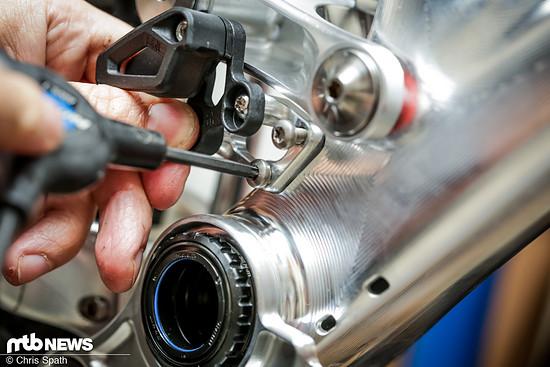 Foto Chris Pole The Maschine Test-4901