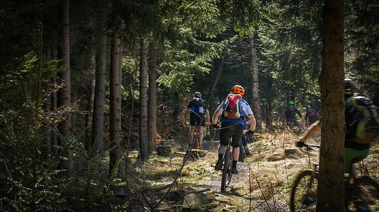 Erfahren und Erleben standen im Vordergrund. Dabei hatten Einsteiger, aber auch versierte Teilnehmer viel Spaß auf den Strecken von Singltrek pod Smrkem