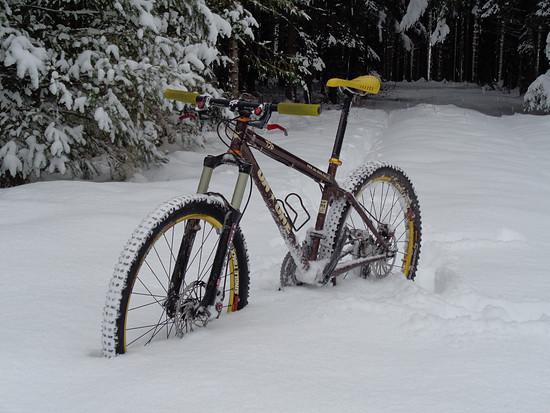 456 Schnee 1