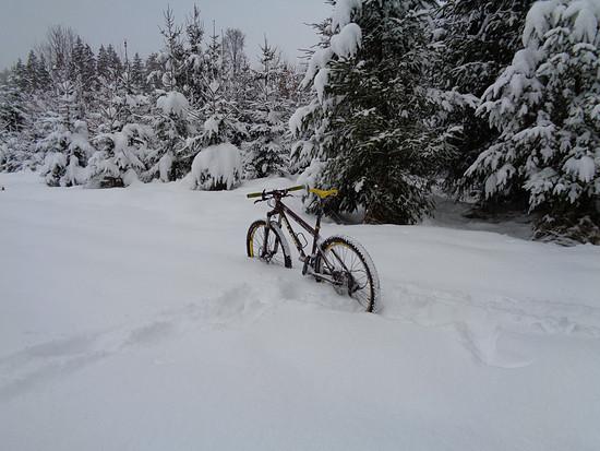 456 Schnee 2