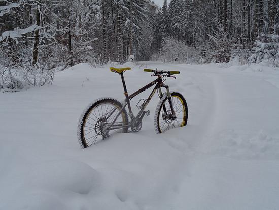 456 Schnee 4