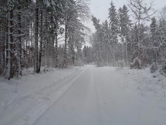 456 Schnee 6