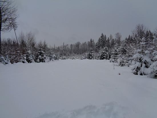 456 Schnee 7