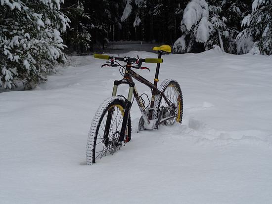 456 Schnee 8