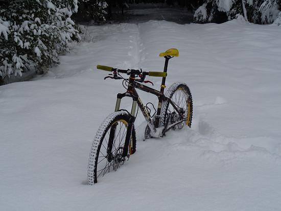 456 Schnee 9