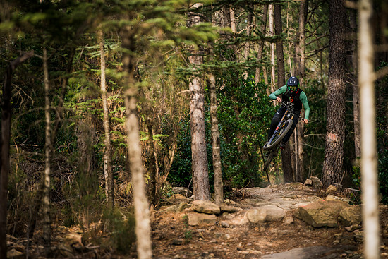 scott-sports-scott-dh-factory-bike-actionimage-2019-dean-lucas-DSC006096