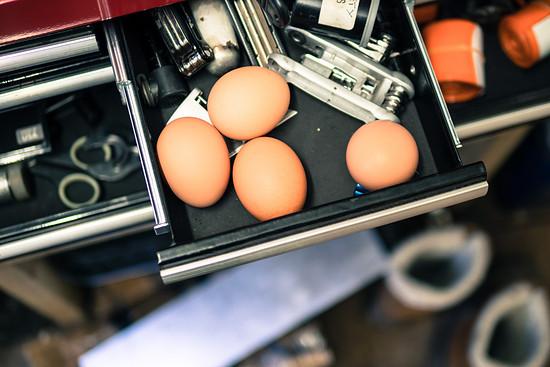 Joe und seine Freundin Fiona haben 6 Hühner. Auf dem Weg zum Kochtopf werden sie mitunter in der Werkstatt zwischengelagert.