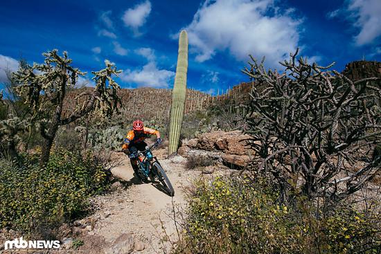 Mit der Eagle im welligen Terrain Tucsons