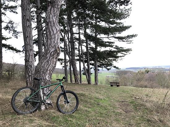 NS Bikes Eccentric Cromo L