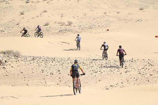 Sand gibt es in Israel, soweit das Auge reicht.