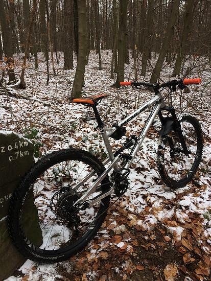 Im Schnee im Wald