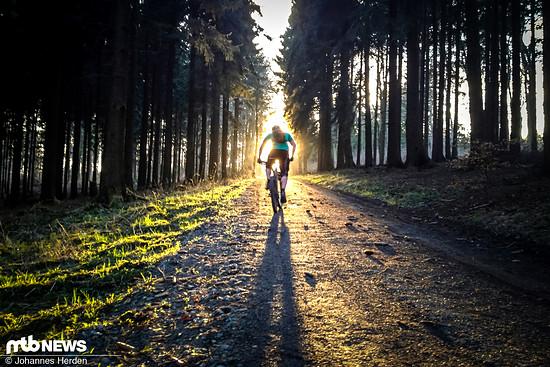 Außergewöhnlicher Zeitpunkt I: Der Fahrer befindet sich genau vor der Sonne, die präzise in den Forstweg hineinscheint