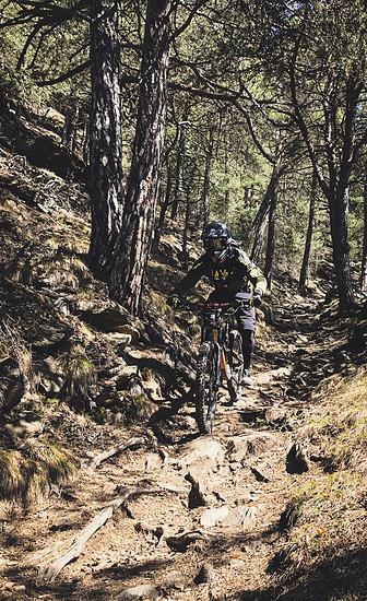 Vinschgau Trails