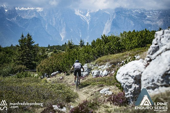 alpine end paganella stromberg1664b
