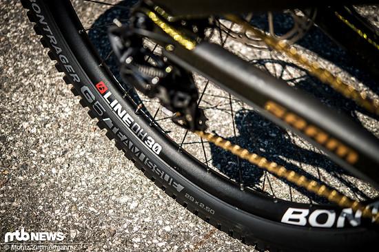 """Die 29"""" Laufräder und Reifen stammen von der Trek-Hausmarke Bontrager."""