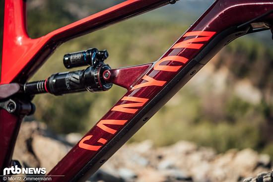 Die Geometrie des Canyon Spectrals liegt voll im aktuellen Durchschnitt moderner Trailbikes und verspricht ein verspieltes Fahrverhalten.