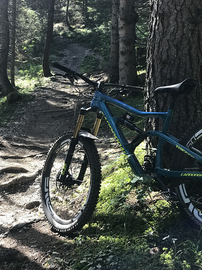 Cannondale Trigger  9