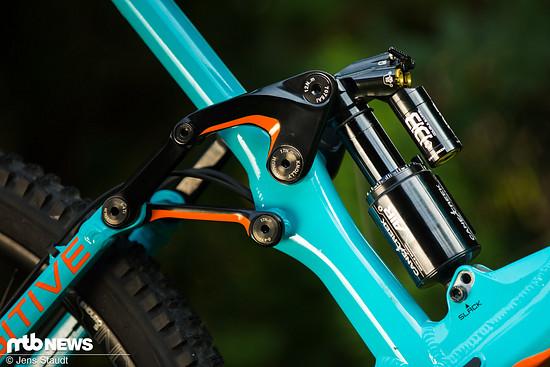 Ausstattungsvarianten gibt es in Deutschland über den Vertrieb tri-cycles nur auf Anfrage