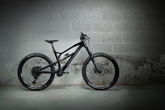 Fans von schwarzen Bikes mit schwarzen Details und schwarzen Anbauteilen werden die Pro-Version bevorzugen.