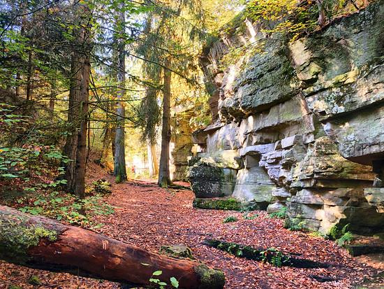Märchenwald Tour