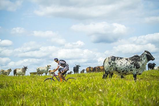 Auf der ersten langen Etappe über 143 Kilometer sorgten Tiago Ferreira (im Bild) und Hans Becking für die Vorentscheidung: Über fünf Minuten Vorsprung konnten sie gegenüber den Zweitplatzierten Fumic/Avancini herausfahren