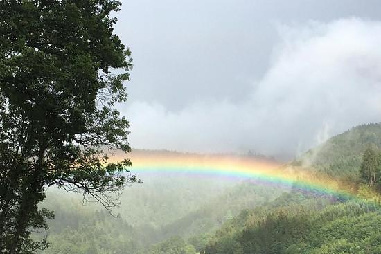 Die Natur zeigte sich in kleineren kurzen Regenschauern von ihrer schönsten Seite.