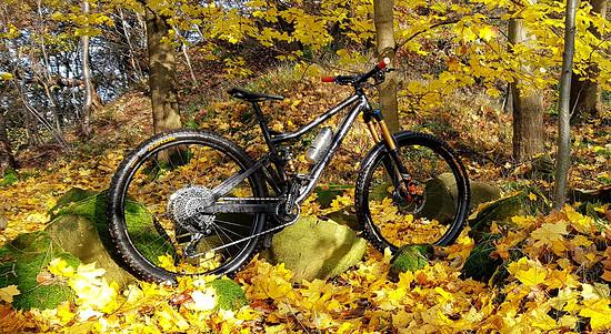 Last Bikes Glen V1 XL