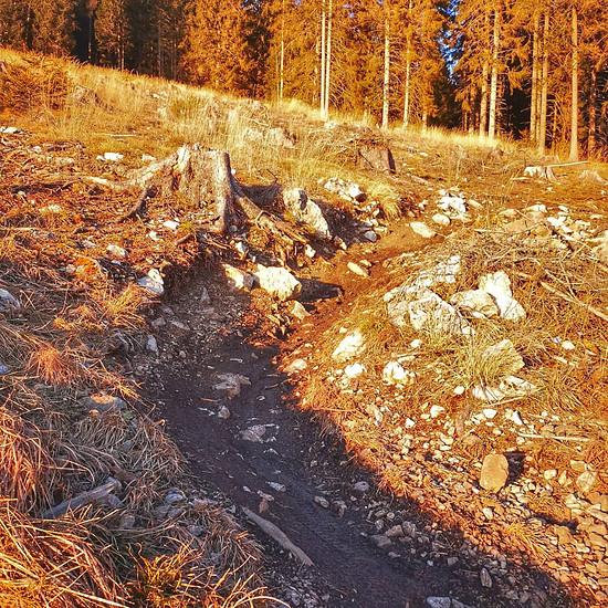 Winterbikesaison Schöckl Trail Area