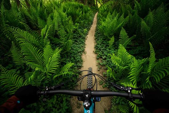 25 05 20-Vittoria Mazza - Rider View - credit @brookscurran
