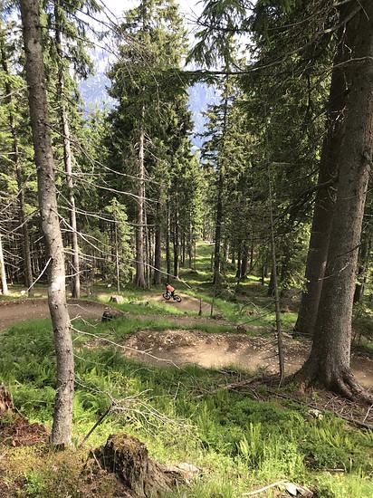 Leogang Steinberg Trail