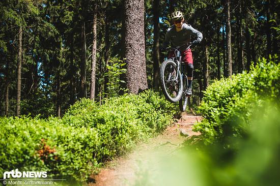 intro-bikes-5484