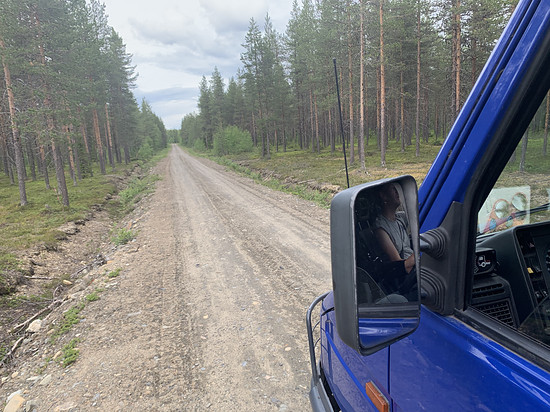 Finnischer Mückenschotter