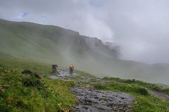 Perfekt zum Aufwärmen: Nach ein paar Metern entspannten Rollens wird der Trail dann schneller und technischer.