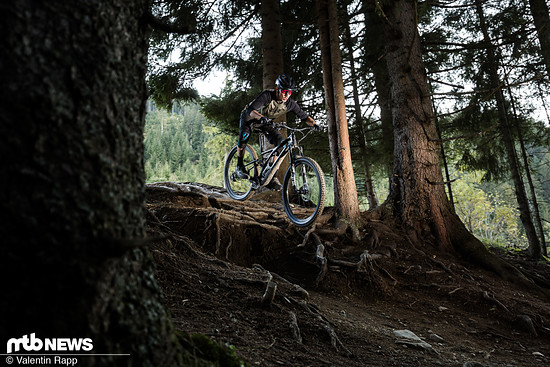 Specialized Stumpjumper-149