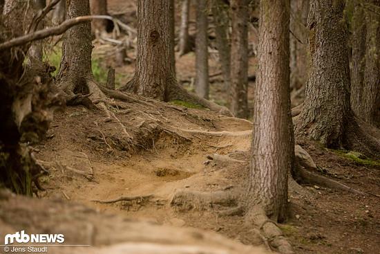 Natürliche Strecken im Park und anderswo